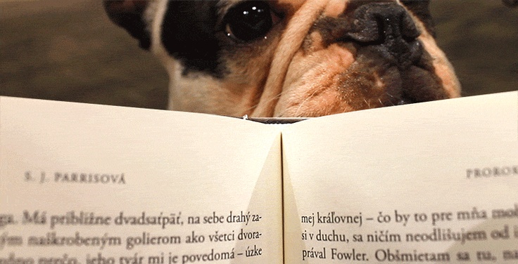 Přidej se k tisícům čtenářů a otevři si knihu, na kterou si neměl čas. :) Už 31. 8. bude #dnk2012