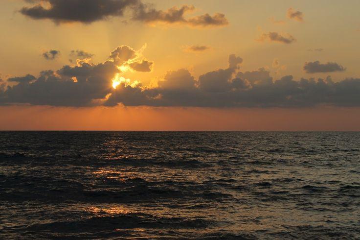 Golden Sunset?