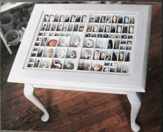 printer's case with seashells as a table