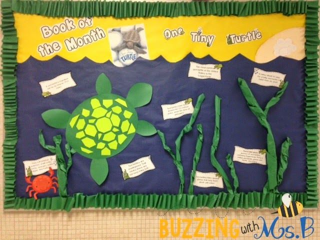 Buzzing with Ms. B: Our latest book of the month: One Tiny Turtle!