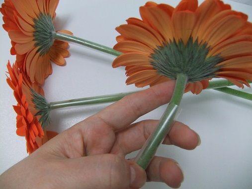 Plastic rietjes kan ondersteuning bieden aan kwetsbare stengels.