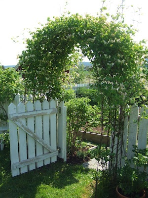 Arbor Designs Ideas arbor design ideas Find This Pin And More On Arbor Designs And Ideas