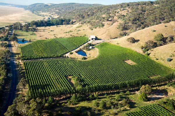 Lerida Estate - Canberra District Five Star Wines
