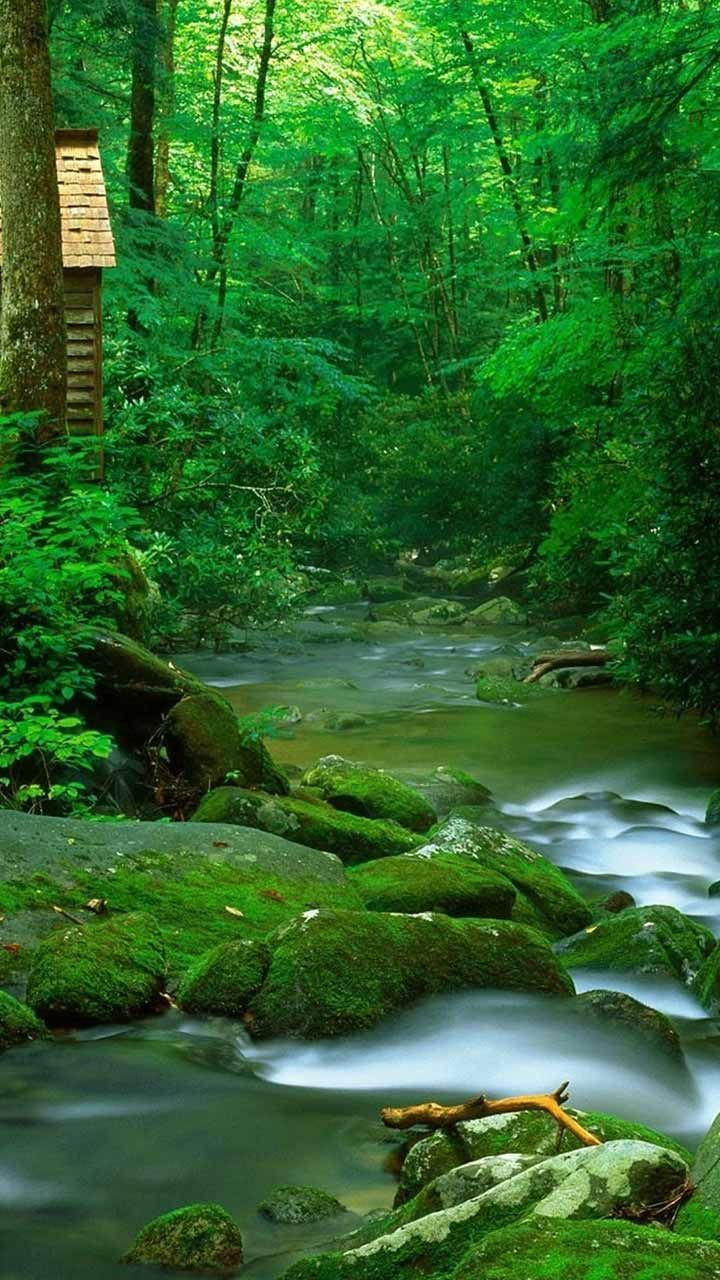 Pin By Gopalreddy On Nature Hd Nature Wallpapers Nature Iphone Wallpaper Nature Wallpaper