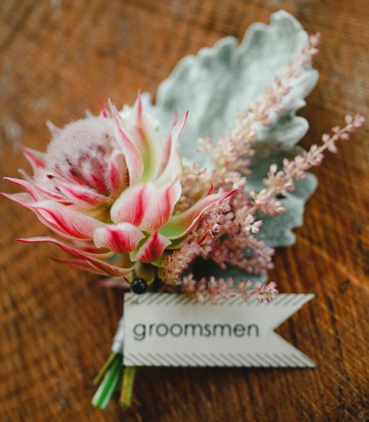 Friday Floral – Protea » Alexan Events | Denver Wedding Planners, Colorado Wedding and Event Planning