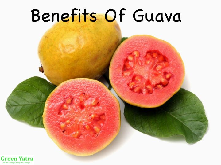 Green Yatra Guava: Health Benefits, Selection and Storage Methods - Green Yatra