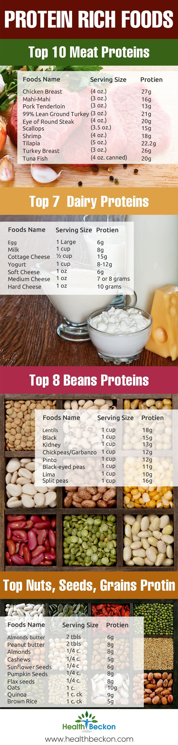 High Protein Rich Foods [Infographic] | ecogreenlove