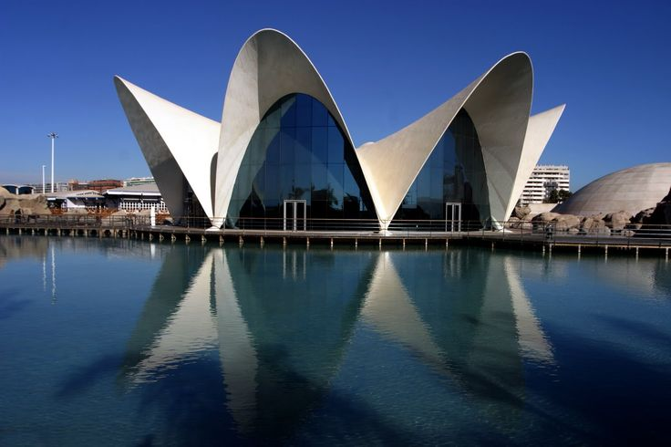 This is the most emblematic restaurant at the Oceanografic because of its spectacular architecture designed by the well-known architect Felix Candela.
