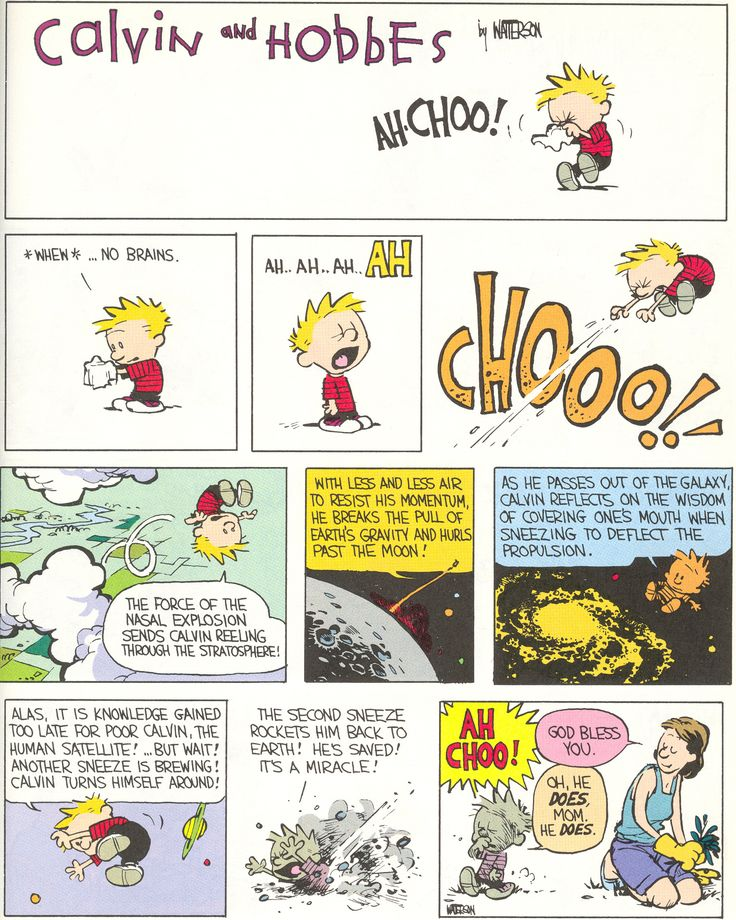 Calvin knows what's important. And Bill Watterson's artwork, especially on the Sunday strips like this, is great.