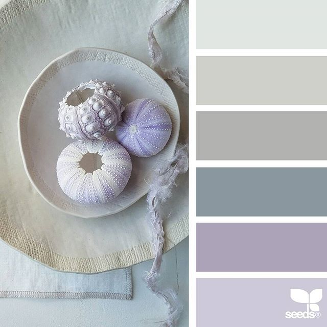 today's inspiration image for { foraged hues } is by @robinzachary ... thank you, Robin, for another breathtaking #SeedsColor image share!