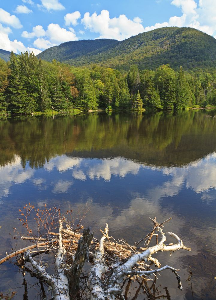 Phelps Mountain reflected in Marcy Dam Pond in the High Peaks region of the Adirondack Mountains of #NewYork