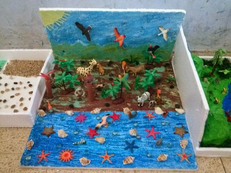 Maqueta de un ecosistema - Imagui