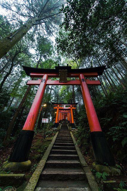 Puertas Torii en Fushimi Inari, Kyoto, Japón. Gran caminata! ¡Hermosa!