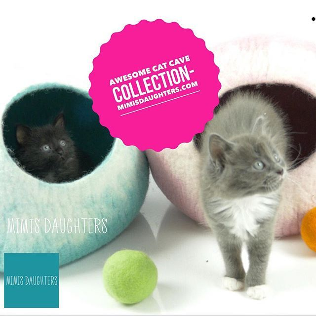 Get you cat a new bed this coming xmas!! #mimisdaughters #catcave #Cats #kitten #kittensofinstagram #catlover #sydneycats #cattoys #cattoy #dogtoy #acatslife #instakitten #kittenplay #felt #felting #catbed