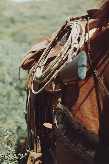 Just a picture can make me melt... reminds me of my cowboy!