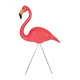 Gazon Flamingo   Na jaren van intensief onderzoek en testen die wij hebben gemaakt zijn dit misschien wel de mooiste gazon flamingo`s in de geschiedenis! Een  (30,5 cm) groot plastic body en twee  (50,8 cm) metalen poten inbegrepen. Geïllustreerde doos met plastic handvat. Leuk cadeau artikel. Voor op balkon of in de tuin.