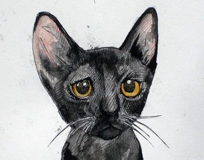 """Check out new work on my @Behance portfolio: """"Black Cat"""" http://on.be.net/N1J4qC"""