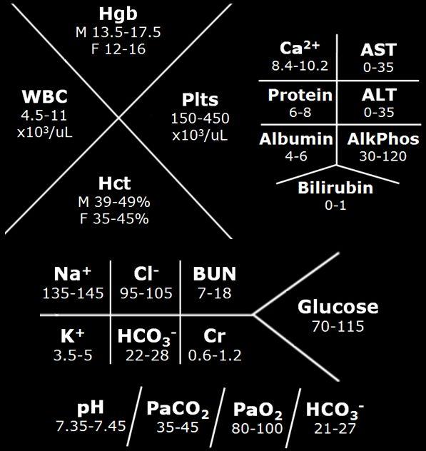 lab values diagrams electrolytes wiring diagram schema rh 20 bftd plast on de cbc blood diagram