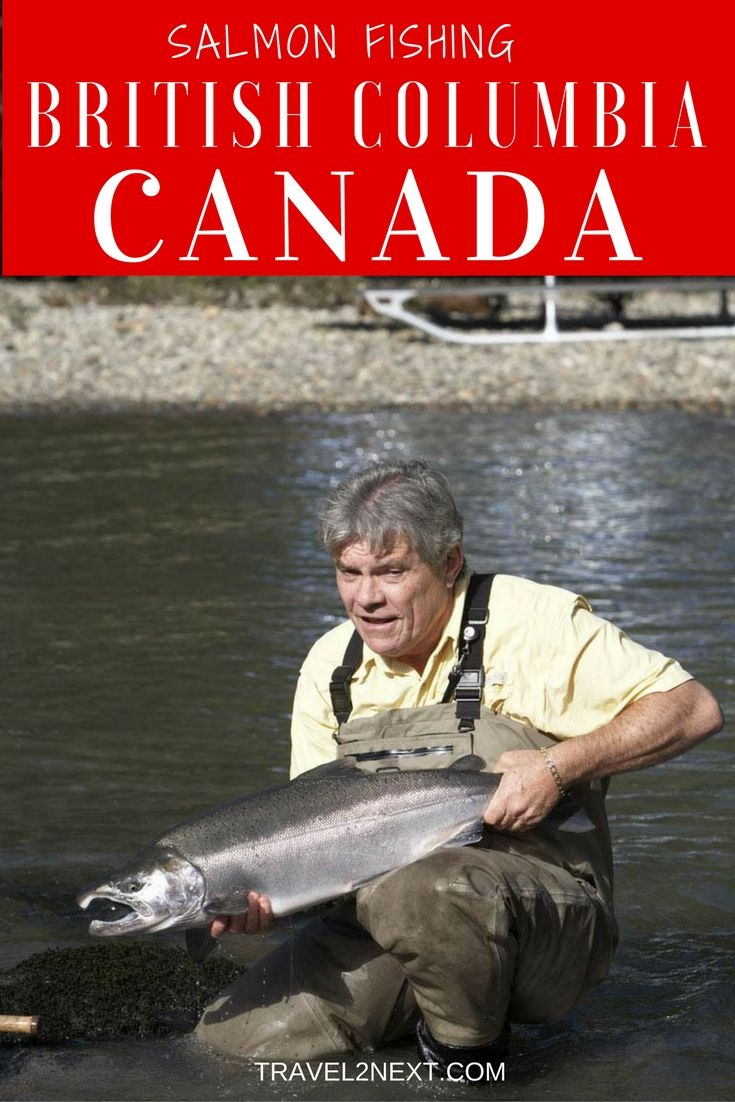 489 best images about extreme fishing adventures on for Salmon fishing canada