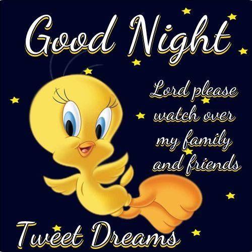 Night Time Quotes: Goodnight Tweety Bird Tweety Bird Goodnight Good Night