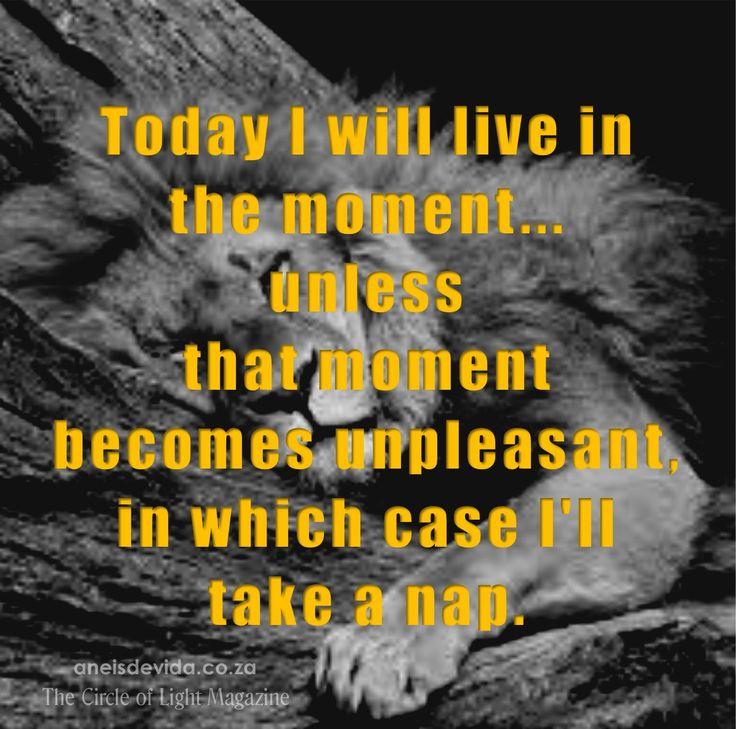Live in the moment or take a nap.  http://aneisdevida.co.za