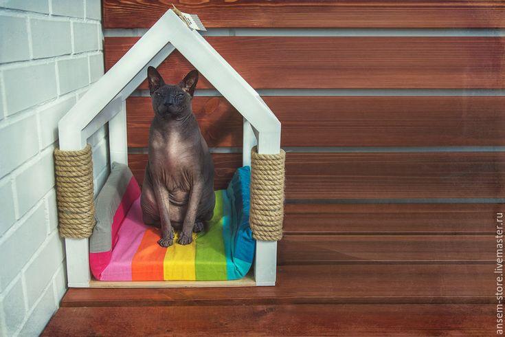 Кошкин дом смешные картинки, про психиатра смешные