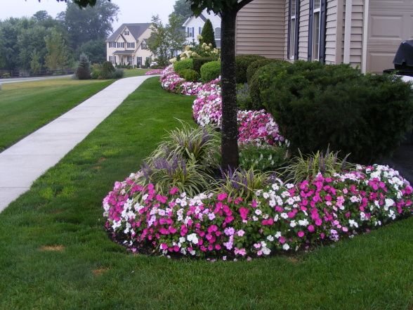 Pretty flower edge landscaping ideas pinterest front for Flower designs for yards