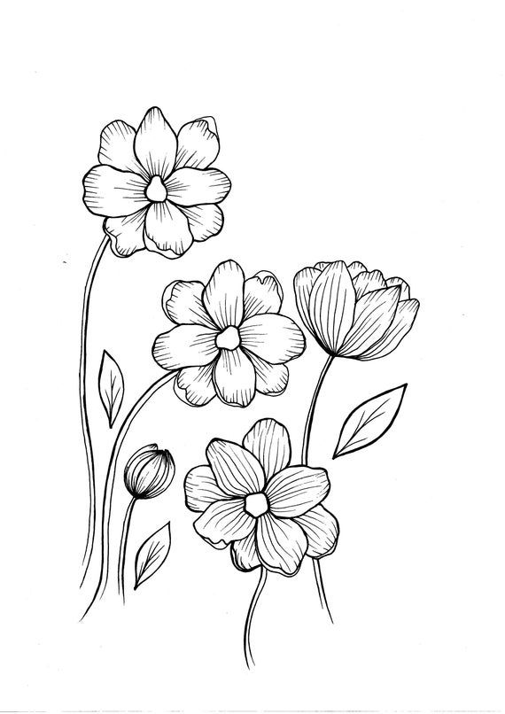 Wild Flowers Pdf Coloring Page Etsy Wildflower Drawing Coloring Pages Flower Coloring Pages
