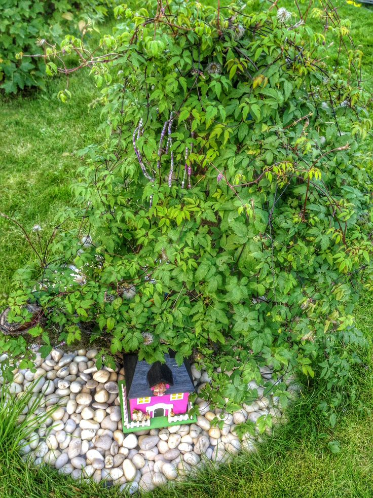 This is how my decorated tree stump looks  now in August 2014.
