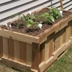 Build a container garden from reclaimed pallets