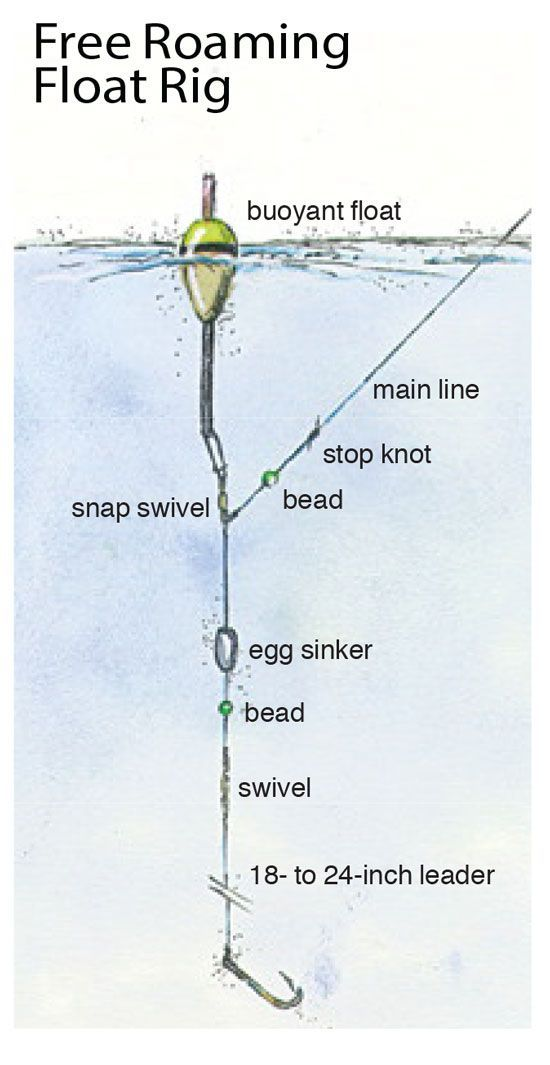 25 best ideas about fishing tips on pinterest fishing for Catfish rigs for river fishing