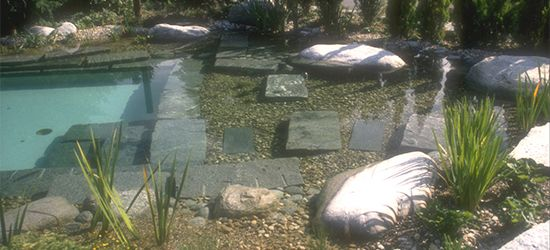 Natural Swimming Pools Warwickshire, Swimming Pond Design Staffordshire, Eco Pools Warwickshire, Water Garden Design Staffordshire, Aqua Lan...