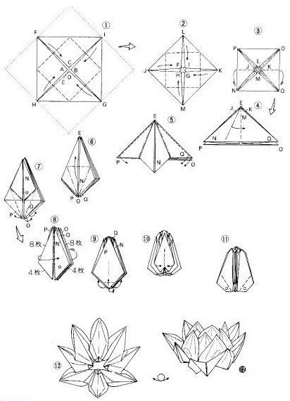 Origami teach you elegant lotus origami tutorial graphic