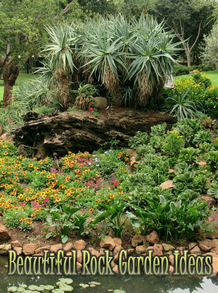 Beautiful Rock Garden Ideas.There are some ideas of working with rock that you can apply for your home garden. Some rock garden ideas for small gardens show