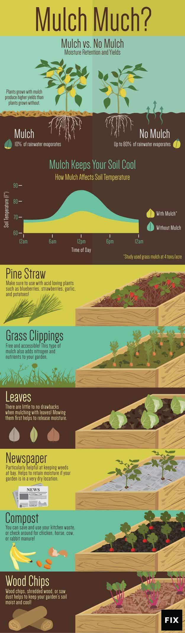 The Benefits Of Garden Mulch | Gardening & Homesteading Tips by Pioneer Settler at http://pioneersettler.com/garden-mulch/