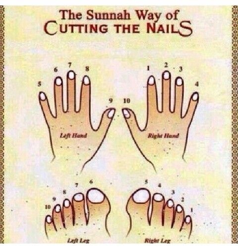 Urutan memotong kuku jari tangan maupun kuku jari kaki. #Sunnah #Islam