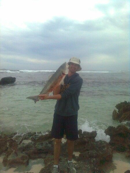Oz salmon