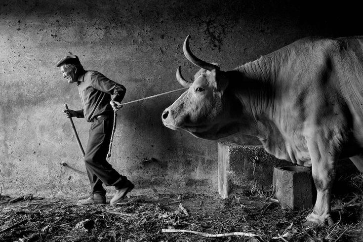 """""""Rural Portuguese People - Beginning Of The Day"""" di Jorge Bacelar."""