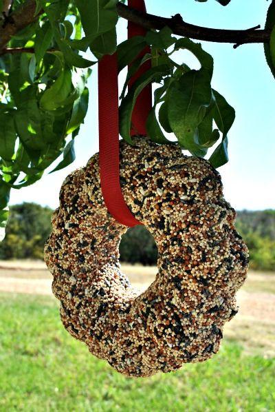 birdseed wreath made in a bundt pan with gelatin.
