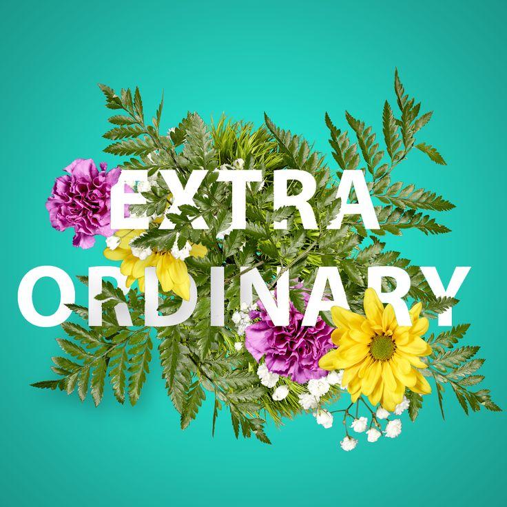 Quote / Extra Ordinary / Flowers / Lyrics   #ExtraOrdinary by Kate Morgan