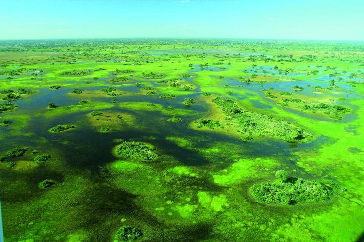 Delta dell'Okavango, #Botswana #Viaggi #Africa #Travel