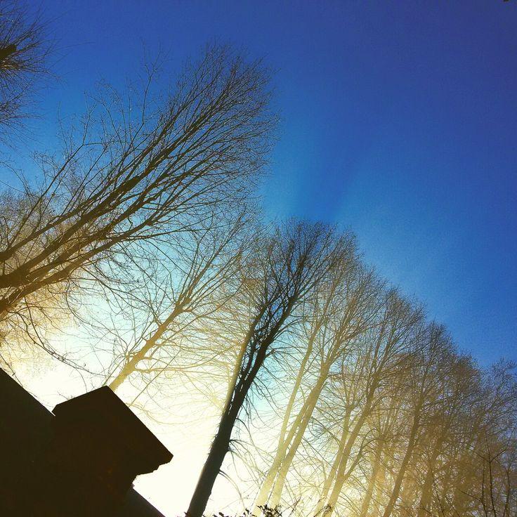 Il cielo d'inverno
