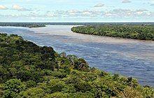 Amazonas-Regenwald – Wikipedia