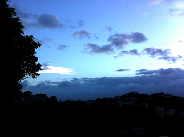 Windy. Wellington.