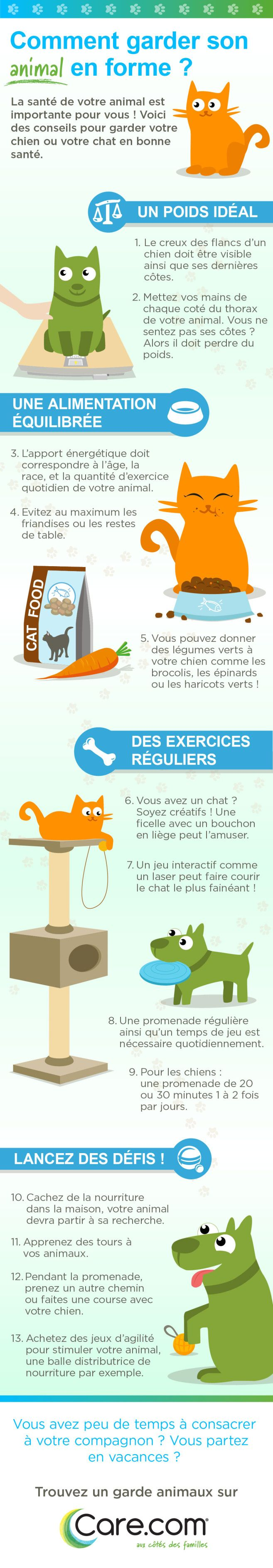 best 25  pet infographic ideas on pinterest