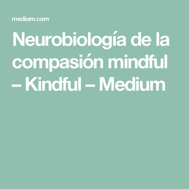 Neurobiología de la compasión mindful – Kindful – Medium