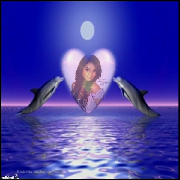 Jms-Dolphins Heart in  the sea http://imikimi.com/main/view_kimi/iCF3-1Ew