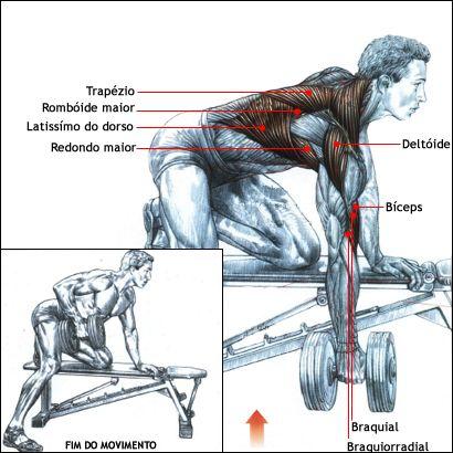 Exercício para as costas remada unilateral 2