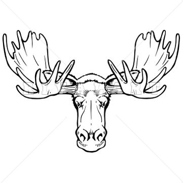 Moose skull drawing - photo#15