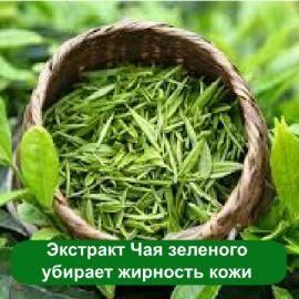 Купить экстракт зеленого чая концентрированный.  Оптовая продажа экстрактов. Применение чая в косметике